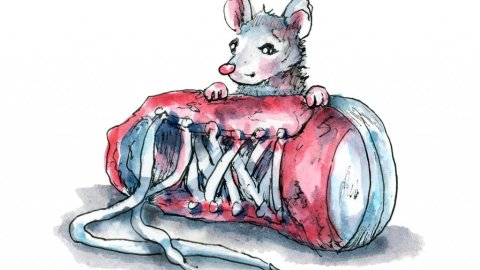Lost Shoe Red Sneaker Mouse Watercolor Illustration Painting