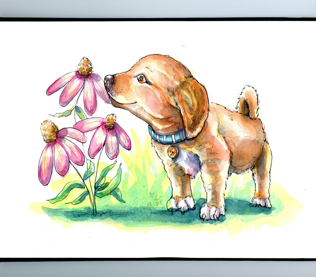 Puppy Smelling Flowers Coneflowers Watercolor Illustration Painting Sketchbook Detail