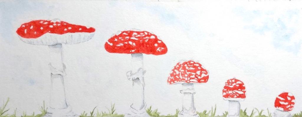 Momentum mushrooms