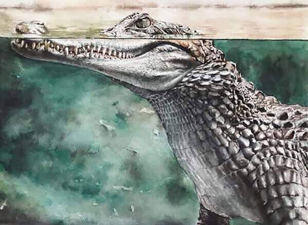 Crocodile Head Coming Out Of Water Watercolor Painting