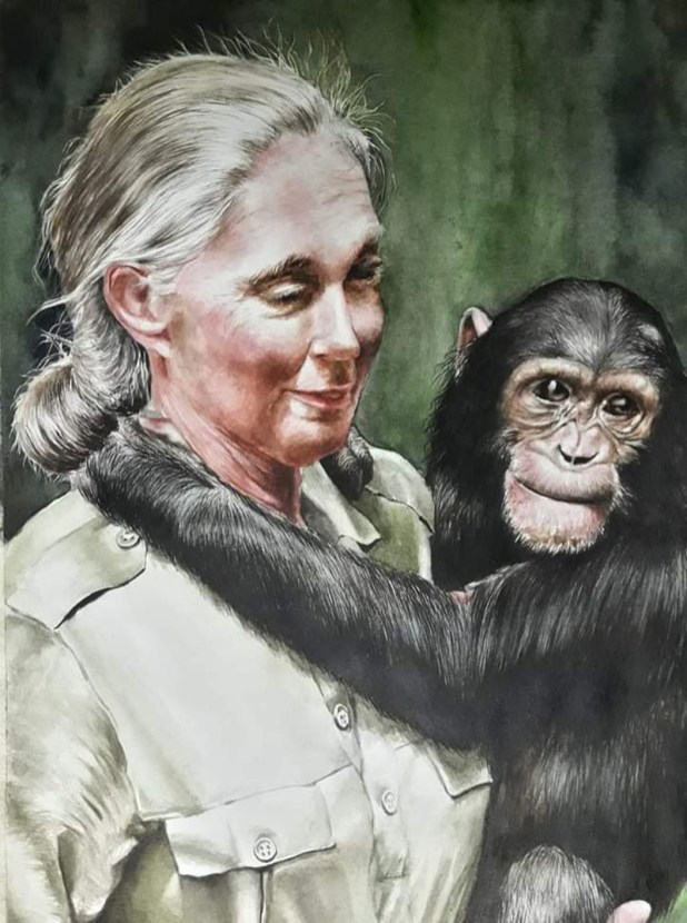 Jane Goodall and Chimpanzee Watercolor Painting