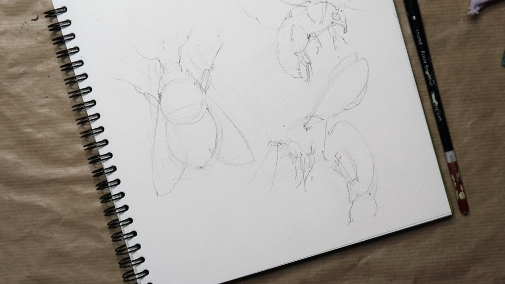 Bees Initial Sketch for Painting Watercolor