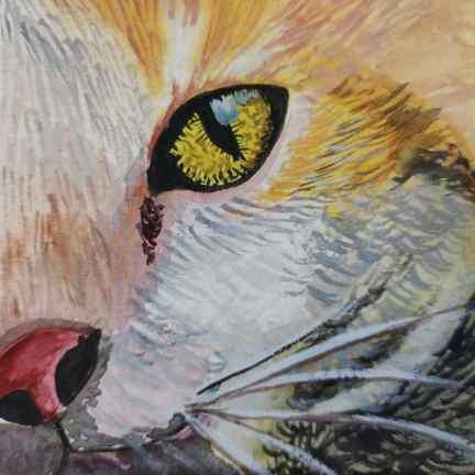 Cat Eye Watercolor by Hridaya Keerthana
