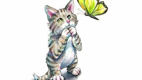 Cat Kitten Tabby Looking At Green Butterfly Watercolor Illustration