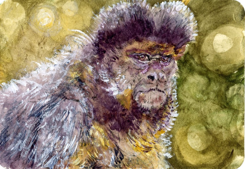 Did you know that capuchins are considered the smartest of the new world monkeys. #DoodlewashSeptemb
