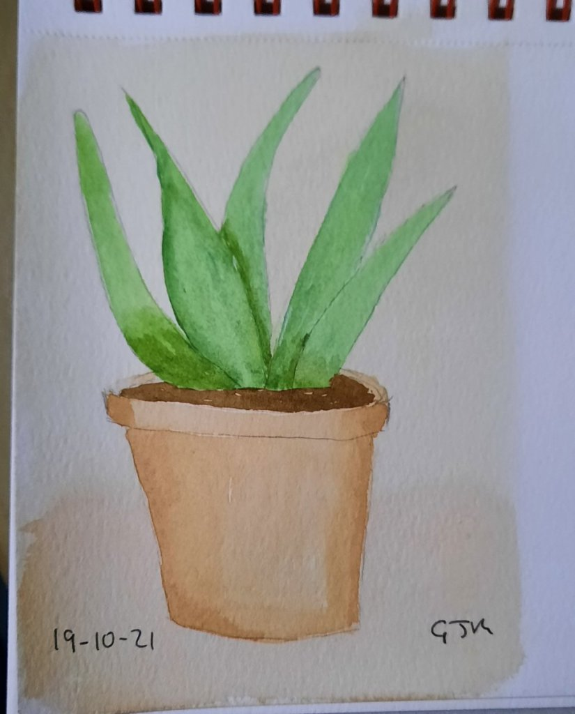 #doodlewashoctober2021 Day 20 Plant. #worldwatercolorgroup 20211019_204509