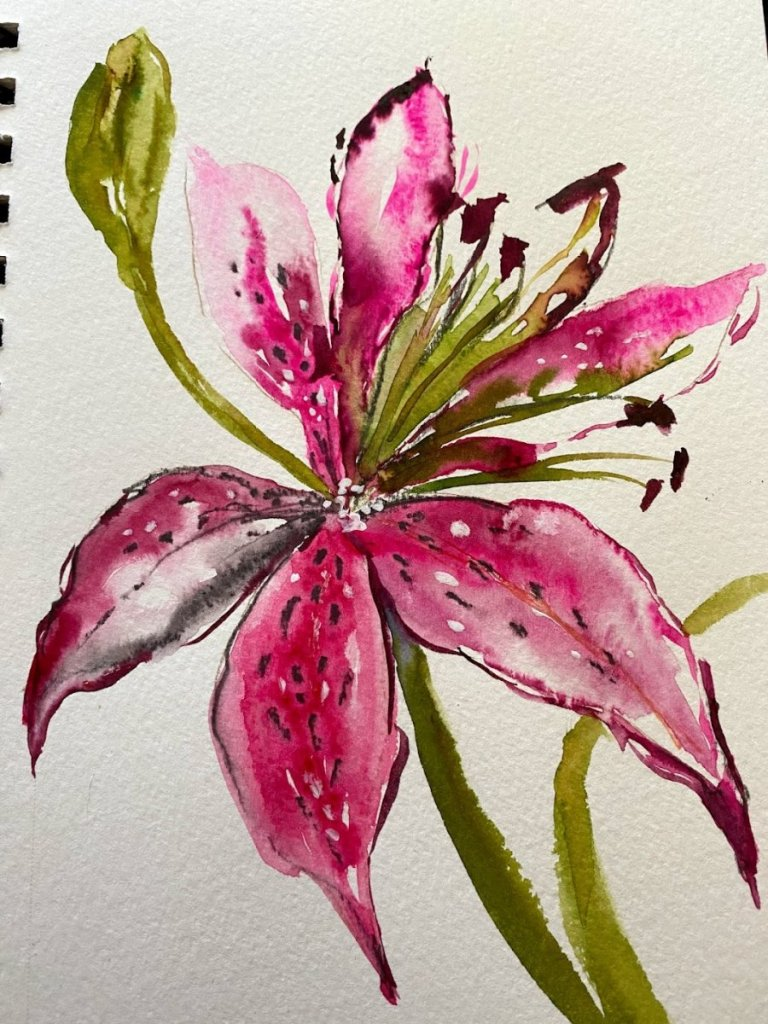 Lily Lily 10-3-21