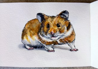Sparky the Hamster by Charlie O'Shields