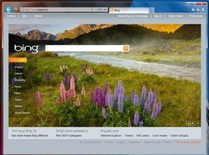 IE9 Screenshot