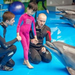 Dolphinarium Kids Playing