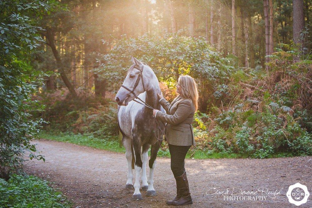 horse and rider in autumn sun