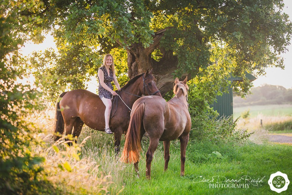 two horses on a photo shoot