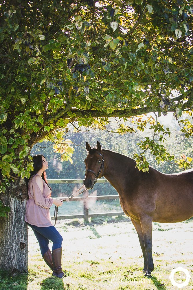 A horse and rider under a tree