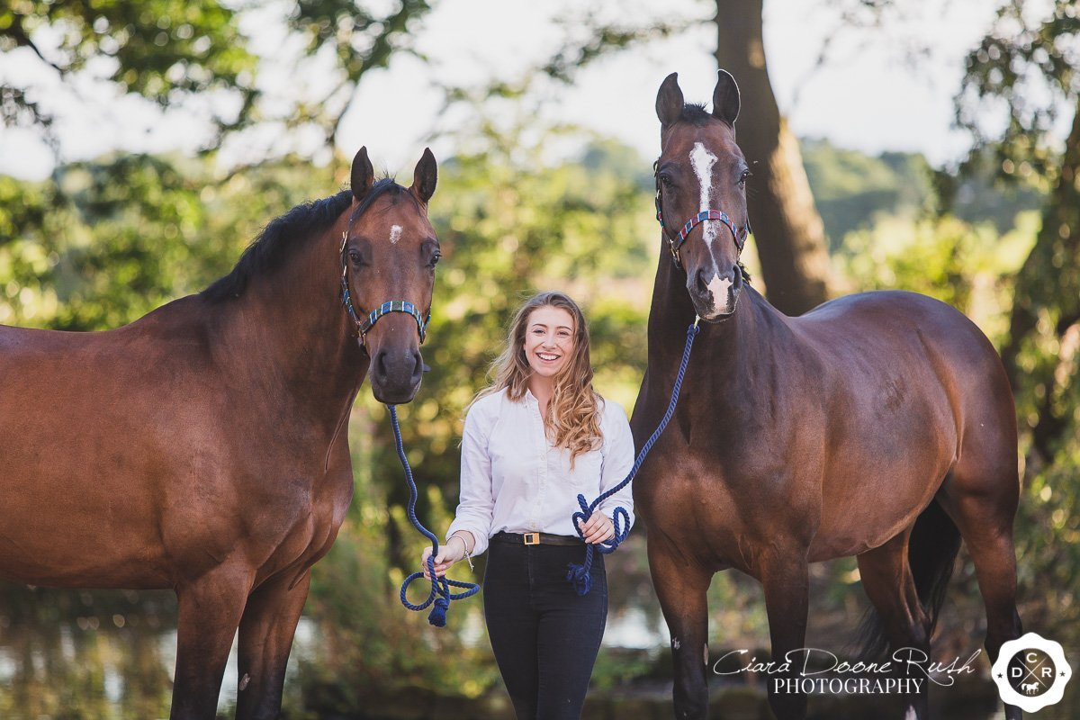 two show horses on a photo shoot