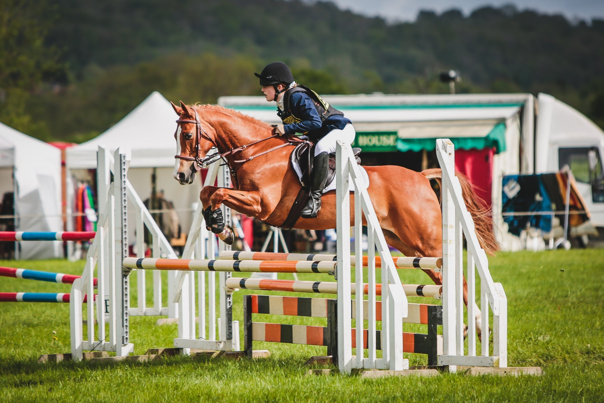 Isabella Shaw and Only Sometimes in the showjumping ring