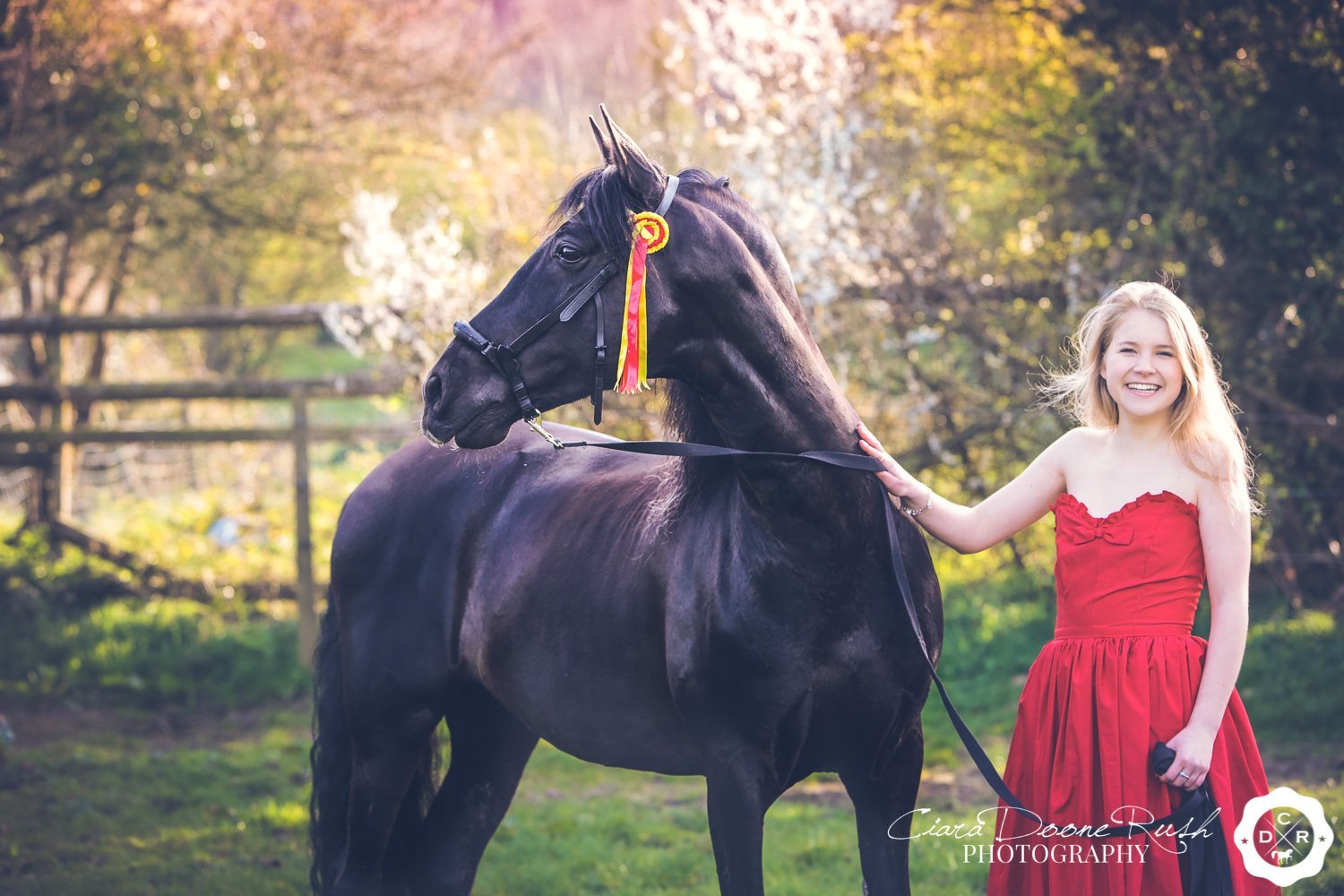 black stallion and a girl in a red dress