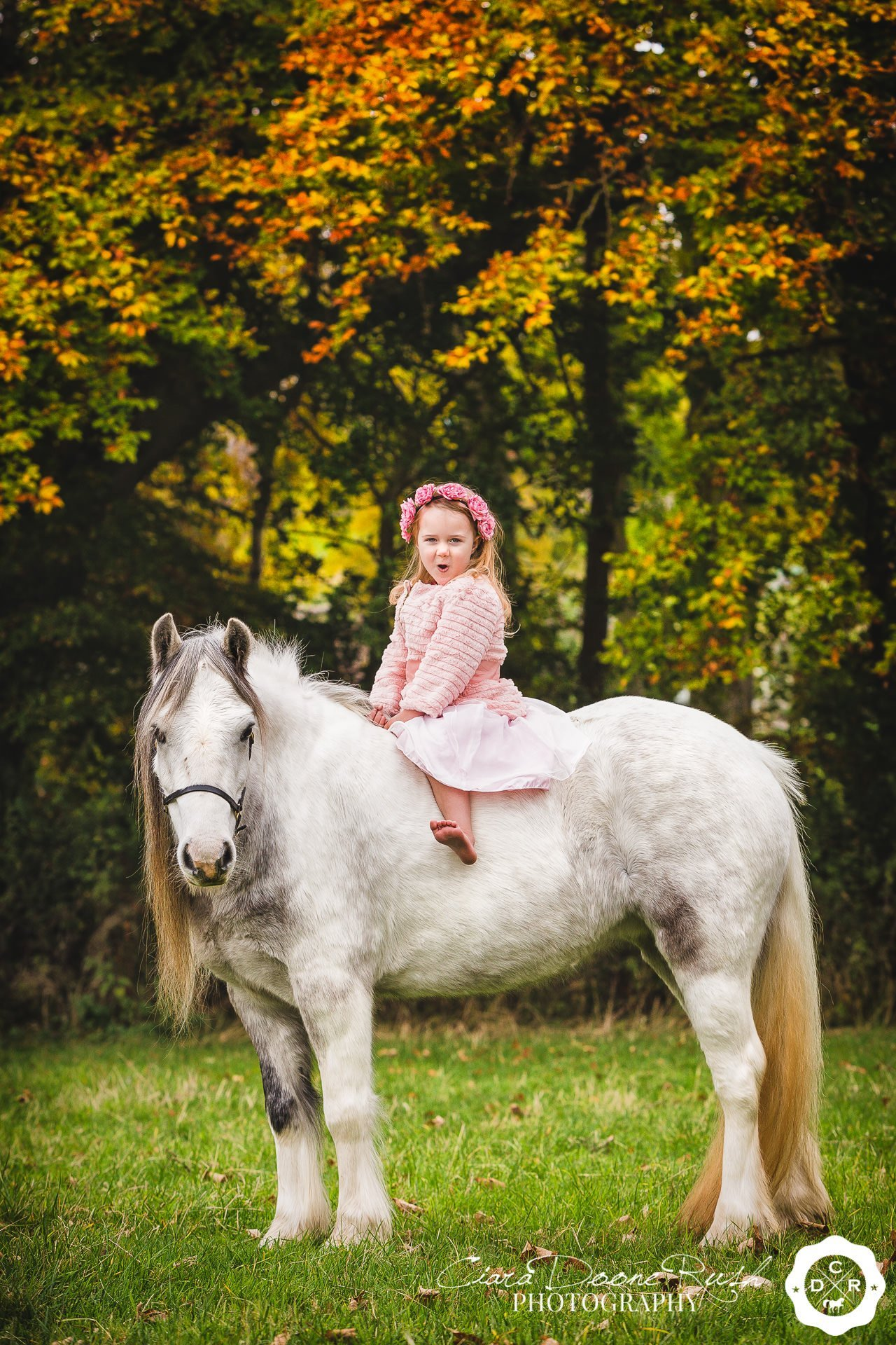 A little girl on her pony on a horse and rider photo shoot