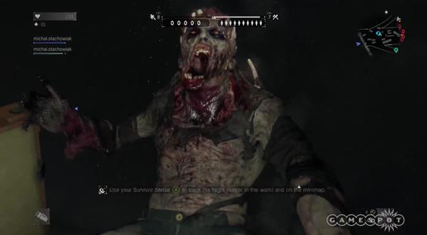 Night Hunter Dying Light