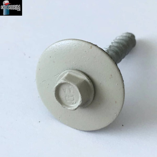 Image of GRAY COLOR screw & washer.