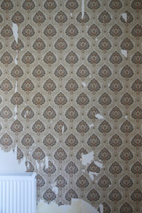 141012-WallpaperStripping-OldWallpaper