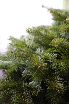 141207-ChristmasTree-BareDetail