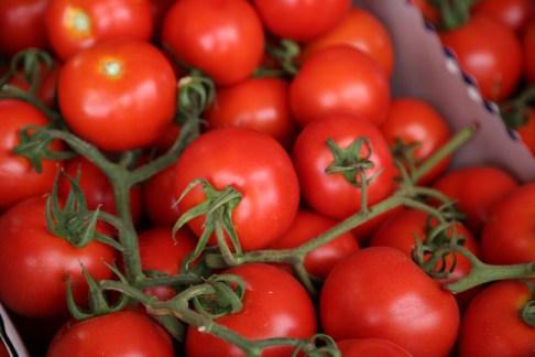 151007-Tomatoes4