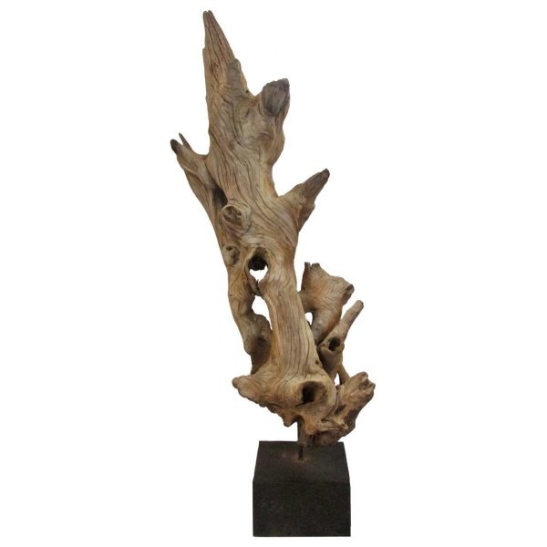 Old Driftwood Mounted as Sculpture