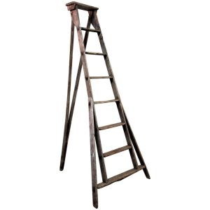 Antique Orchard Ladder