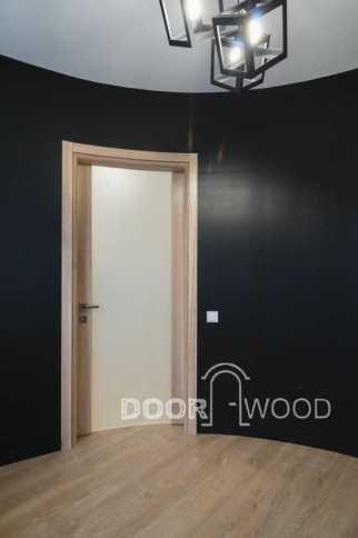 Дверь с ударопрочным закаленным стеклом