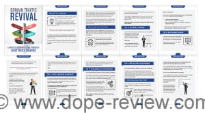 Domain Traffic Revival Review