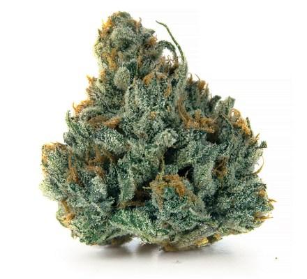 Blue Cheese Shatter - Dapper Dabs 9