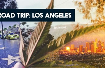 Road Trip: Los Angeles 1