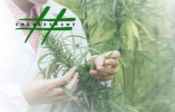 #End420Shame: Cannabis Testing 1