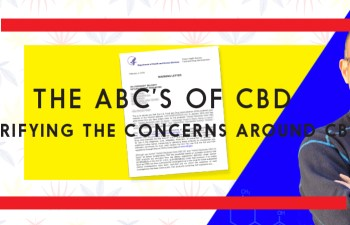 Branding Bud: The ABC's of CBD 4