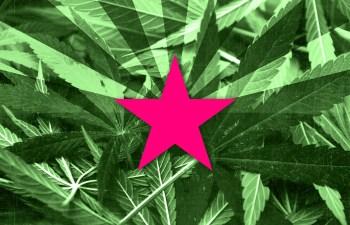 Marijuana In Arizona: Officer Discretion Comes Into Question