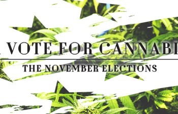 A Vote For Cannabis: The November Elections 2