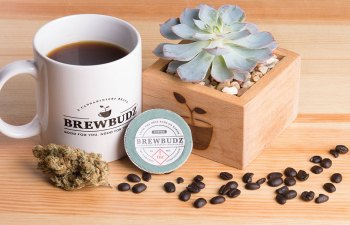 Brewbudz Infused Coffee