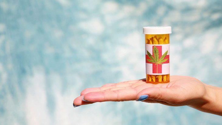 Nursing a Cure: Two Women Dedicated to Cannabis Healing
