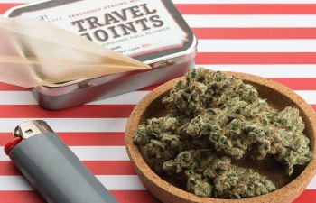 Travel Joint Strain by Green Life Productions