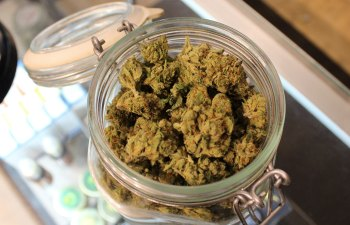 Green Earth Farmacie - Van Nuys, CA