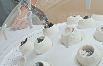 Mycoremediation: Plastic Eating Mushrooms