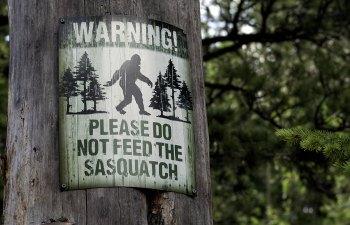 Sasquatch! Music Festival: Time To Do Better