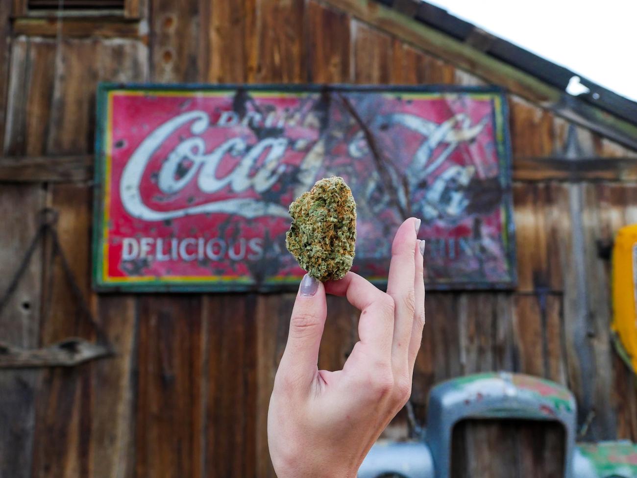 Using Nevada for Cannabis Marketing