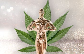 And For Best Stoner Comedy, the Oscar Goes To…