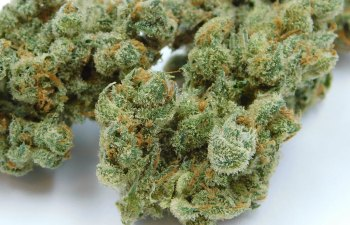 Pure Haze by Virtue Las Vegas