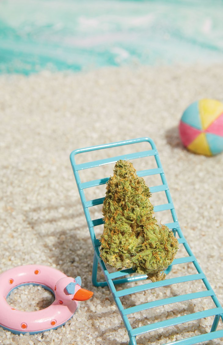 Tahiti Lime by Kindness Cannabis