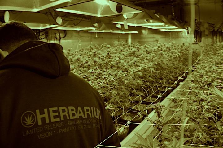 Herbarium - West Hollywood, CA