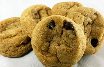 1:1 Ratio Peanut Butter Chocolate Therapy Cookies by Dr. Norm's