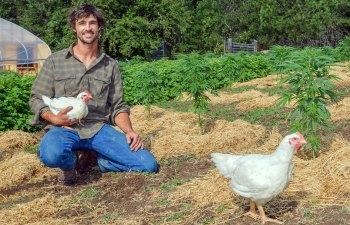 Elk Mountain Farm: Permaculture