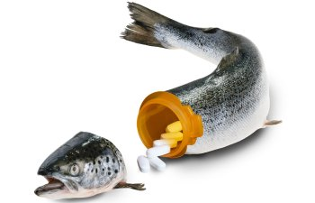 opioid epidemic in our seafood